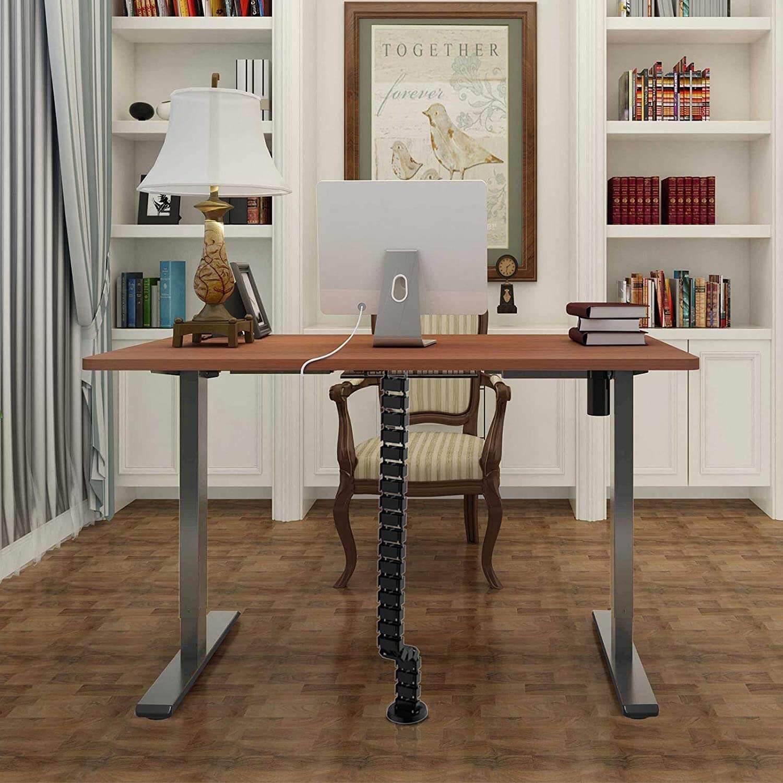 Flexispot Electric Standing Desk