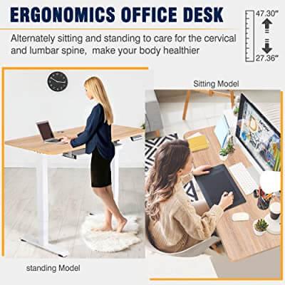 MONOMI Electric Standing Desk Height Adjustment